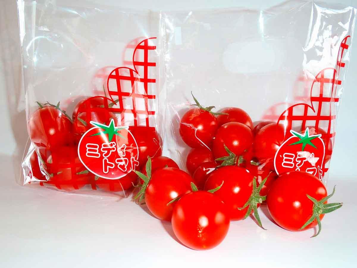 今週末「JAバンク×みんなのきょうの料理 健康キッチン~JA直売所キャラバン~」が安来市にやってくる!